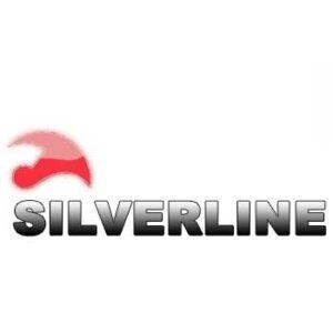 silverline productos sector dental odontologia